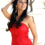 Asin Thottumkal Measurements, Height, Weight, Bra Size, Age, Wiki