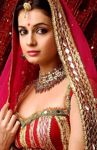 Dia Mirza Boyfriend, age, Biography