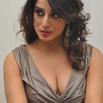 Mahi Gill Height and Weight 2013