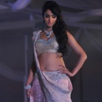 Sonal Chauhan height and weight 2014