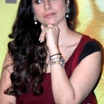 Tabu Upcoming films,Birthday date,Affairs