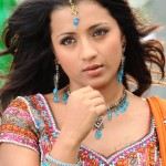 Trisha Krishnan Height and Weight 2013