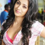 Trisha Krishnan Measurements, Height, Weight, Bra Size, Age, Wiki