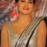 Veena Malik Height and Weight 2013