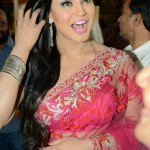 Veena Malik Upcoming films,Birthday date,Affairs
