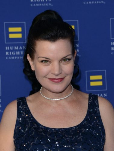 Pauley Perrette Upcoming films,Birthday date,Affairs