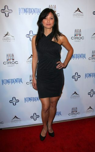 Kelly Hu Upcoming films,Birthday date,Affairs