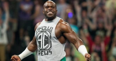 Apollo Crews Chest Biceps size
