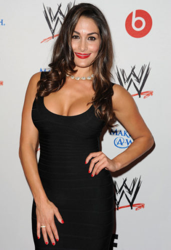 Nikki Bella Measurements, Height, Weight, Bra Size, Age, Wiki