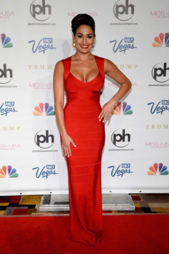 Nikki Bella Upcoming films, Birthday date, Affairs