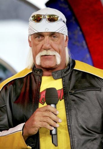 Hulk hogan films-8837